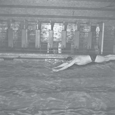 Swimmer diving