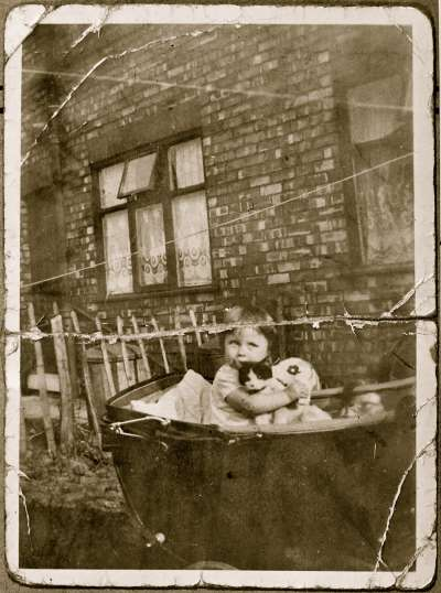 Child and kitten in pram