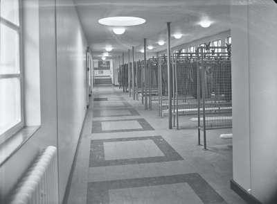 Hope Hall Secondary Modern Cloak room